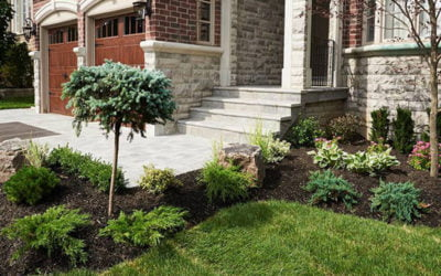 Does the Landscape Surrounding Your Home or Business Have a Drinking Problem?