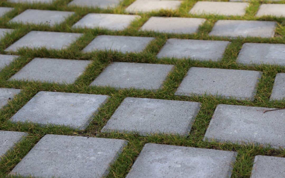Essential Tips to Maintain Your Pavement